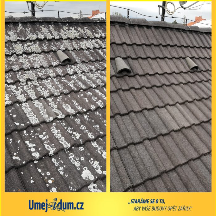 odstranění lišejníku a mechu ze střechy