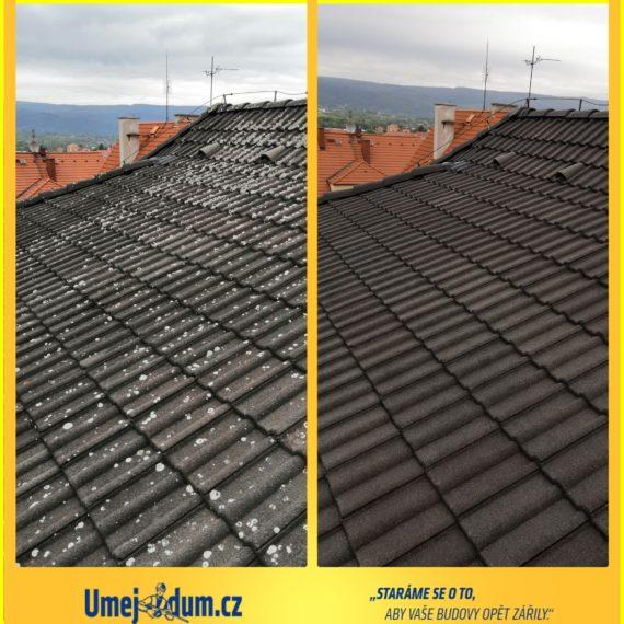 odstranění mechu ze střechy