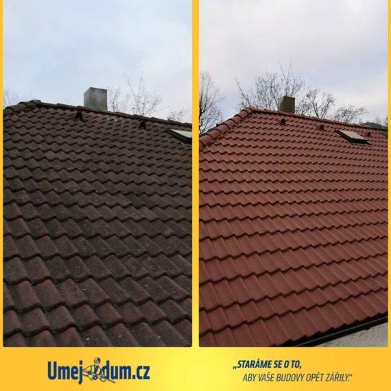 cena čištění střechy