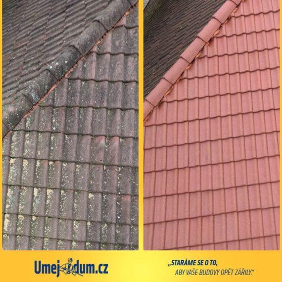 cena mytí střechy